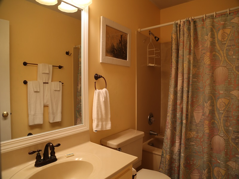 Hall bathroom with tub/shower