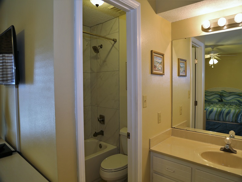 Master bath - shower/tub combo with vanity