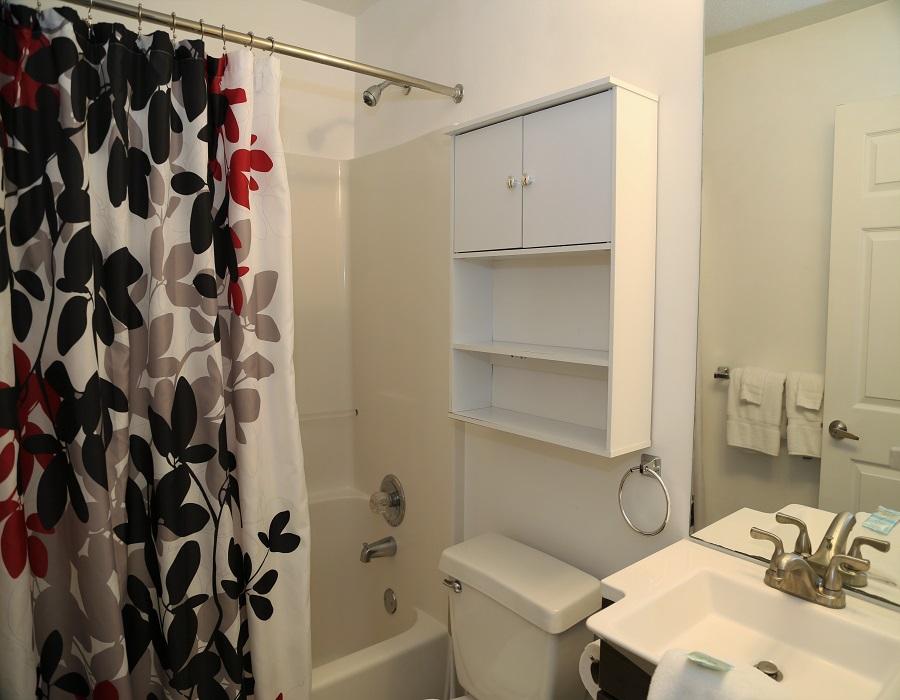 Hall bathroom - shower/tub combo
