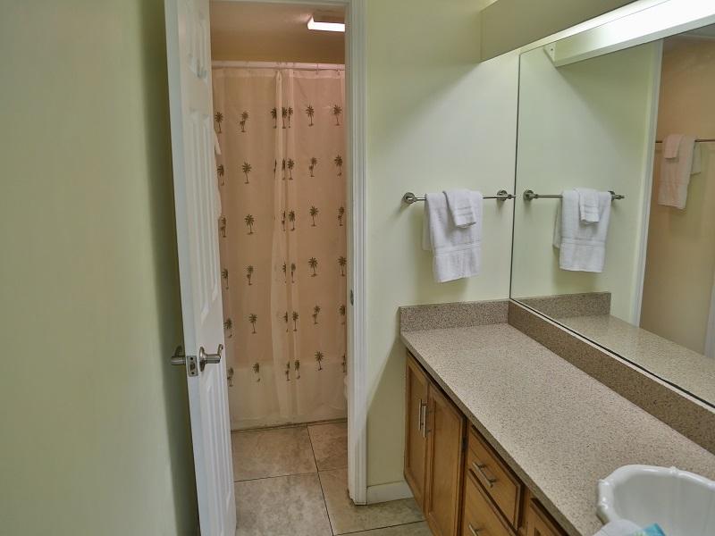 Master Bathroom - Shower/tub combo