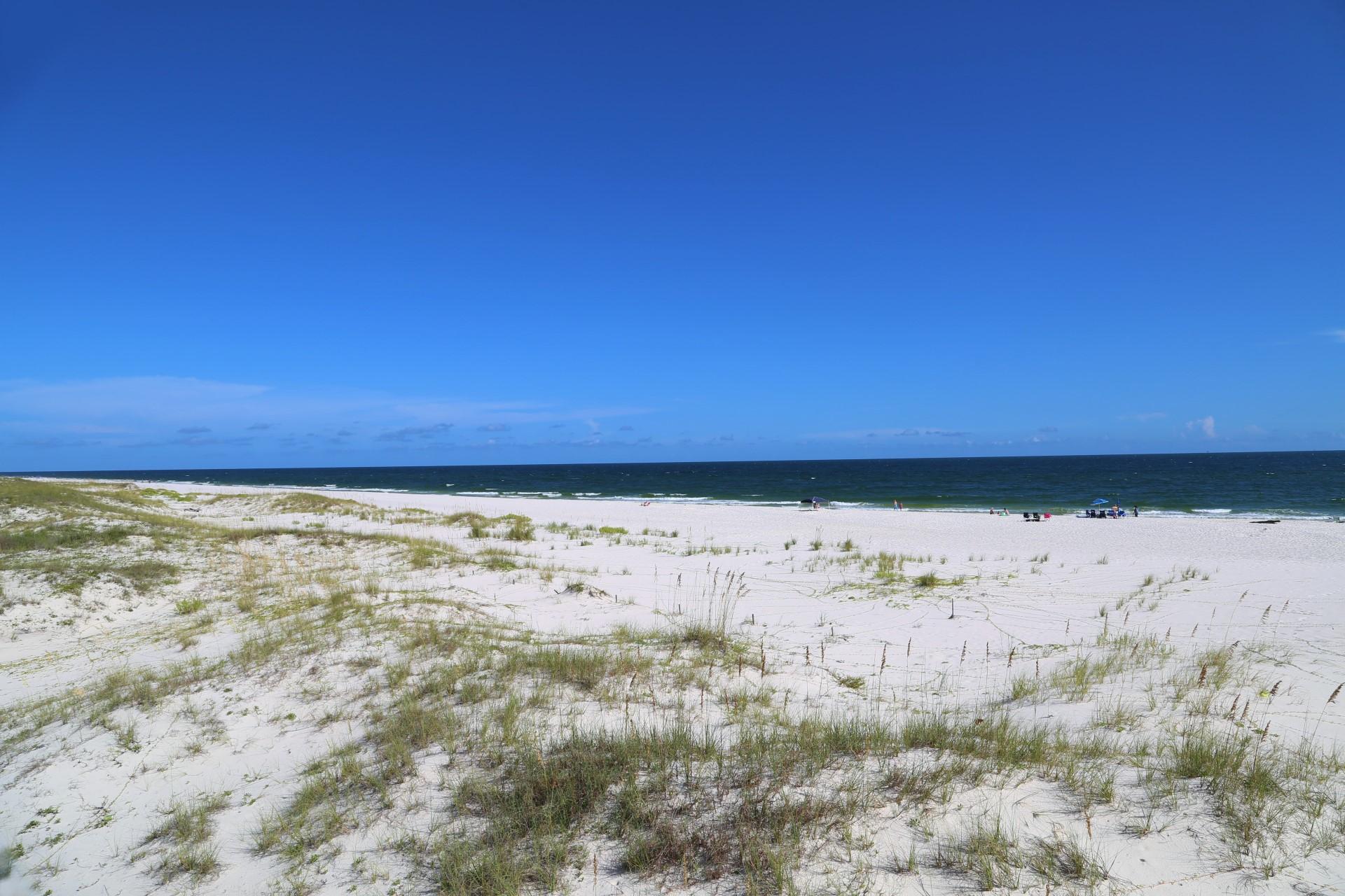 Miles of beach to explore!