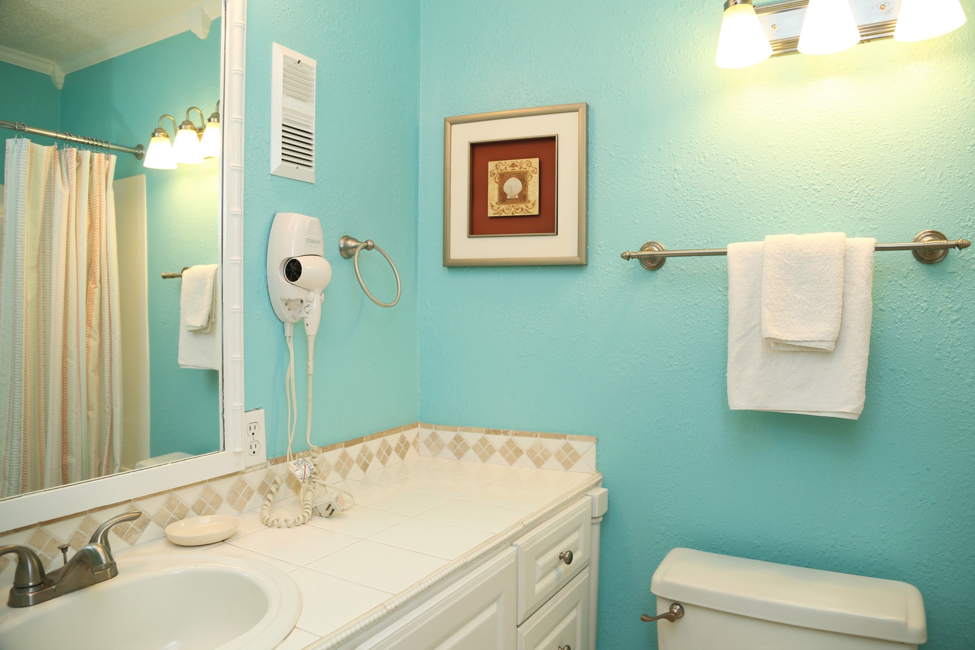 The hall bathroom includes a shower/tub combo.
